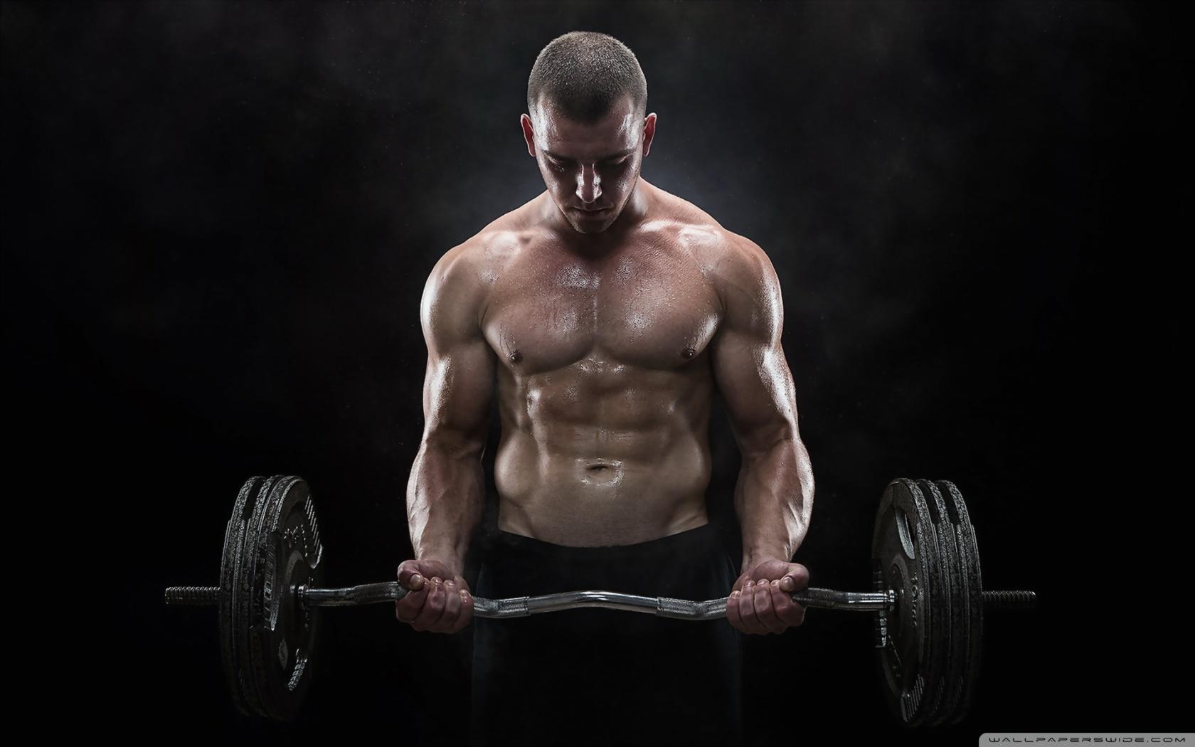 효과적인 운동방법 – 무료 PT프로그램